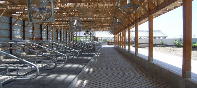 M牧場・乾乳舎新築工事