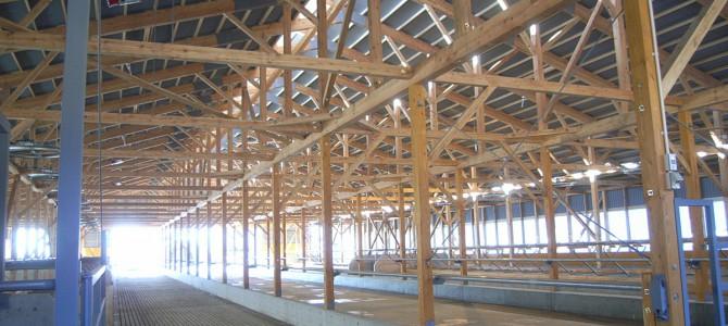 T牧場・フリーストール牛舎新築工事