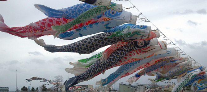 歴舟川にかかる236匹のこいのぼり
